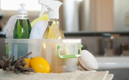 hogar o negocio a punto con recetas ecologicas